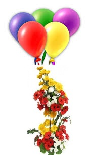 5 coloured Air filled balloons 20 Mix Gerberas 2 tier basket