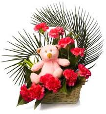 Carnations with teddy